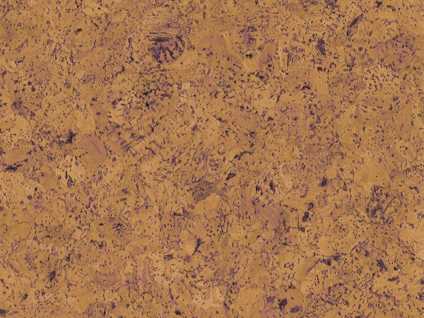 TRECOR® Korkboden mit Klicksystem EVORA Korkfertigparkett - 10,5 mm Stark - Farbe: Orange