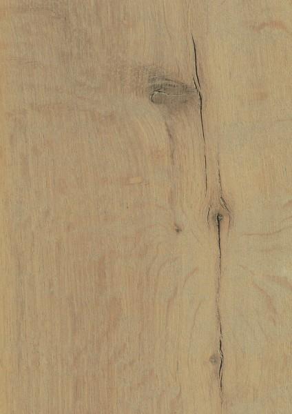 Hayfield Oak