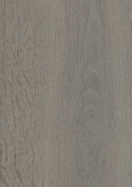 Wolfsback Oak